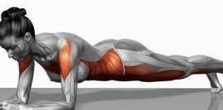 Luyện tập Plank giúp bạn giảm mỡ bụng hiệu quả