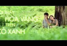 Tôi thấy hoa vàng trên cỏ xanh đang là một bộ phim được nhiều khán giả trẻ quan tâm